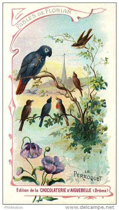le-perroquet-florian