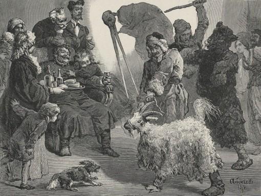 melanka goat guiding