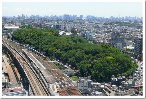 800px-Asukayama_Park