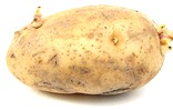 800px-Russet_potato_cultivar_with_sprouts
