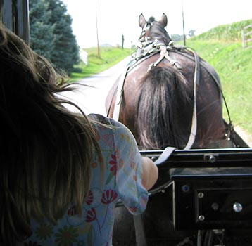 Photo of Amish Buggy