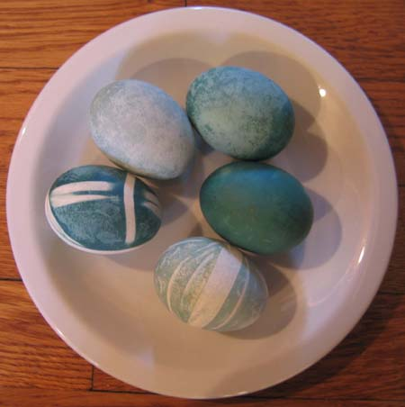 Photo of Eggs Dyed Naturally Blue