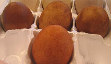 Photo of Eggs Dyed Naturally Brown