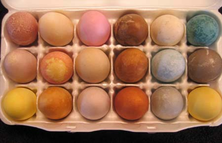 Photo of Dyed Eggs