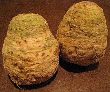 Photo of Celeriac - Celery Root