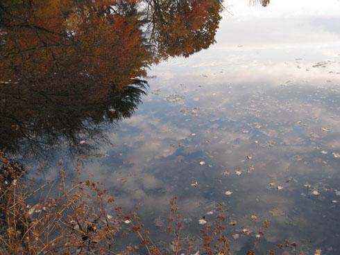 Photos of Autumn Lake
