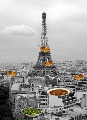 Mice in Paris