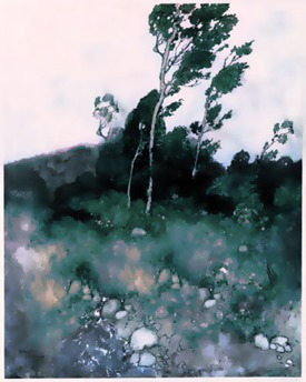 wind_in_trees