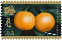Picture of the US Year of Rabbit Stamp 2011