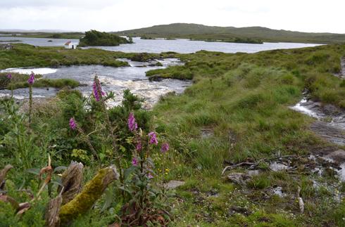 Connemara Cradle Song  - Irish Children's Songs - Ireland - Mama Lisa's World: Children's Songs and Rhymes from Around the World 1