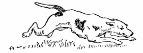 I Had a Little Dog and His Name Was Blue Bell - English Children's Songs - England - Mama Lisa's World: Children's Songs and Rhymes from Around the World  - Intro Image