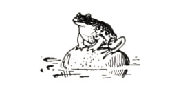 The Frog in the Bog - American Children's Songs - The USA - Mama Lisa's World: Children's Songs and Rhymes from Around the World  - Intro Image