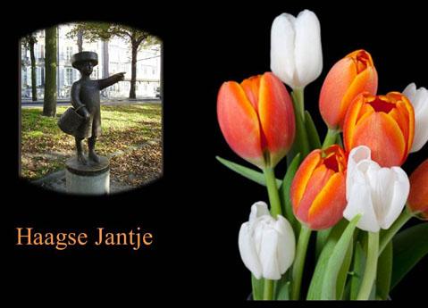 In Den Haag daar woont een Graaf - Chansons enfantines néerlandaises - Pays Bas - Mama Lisa's World en français: Comptines et chansons pour les enfants du monde entier  - Intro Image