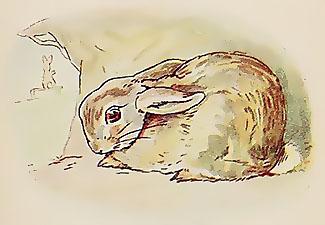 Häschen in der Grube<br />(Petit lapin dans son gîte)