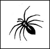 Sur le plancher une araignée - Chansons enfantines françaises - France - Mama Lisa's World en français: Comptines et chansons pour les enfants du monde entier  - Intro Image